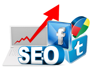 Why SEO is Important for Your Online Business